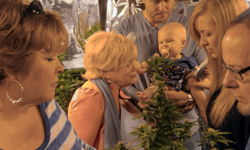 Weed the People Chronicles Families Searching For Cannabis Cancer Treatments