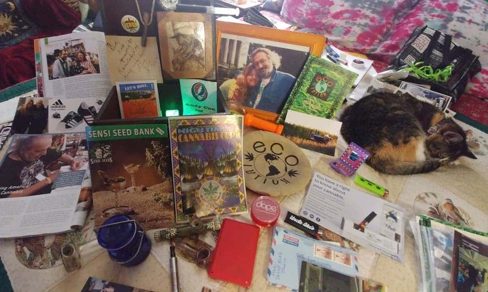 What's in Your Stash? Eve Lentz, Seattle Hempfest Historian • High Times